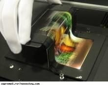 Гибкие OLED-дисплеи от SEL и NOKIA